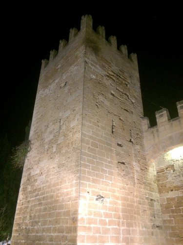 Alcudia Burg