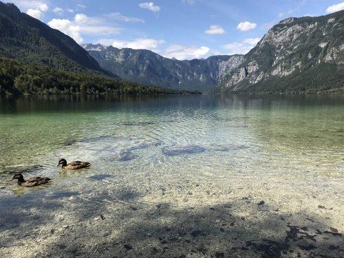 Bohinj See Blick auf Berge