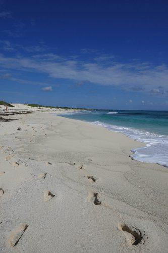 Cozumel Strand Punta Morena
