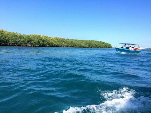 Isla Mujeres Schnorcheln