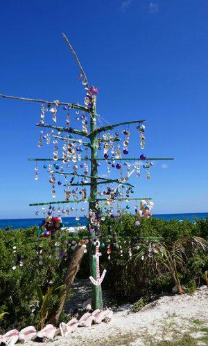 Isla Mujeres Weihnachtsbaun