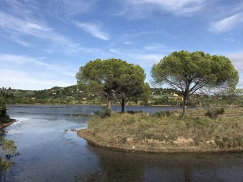 Strunjan Naturreservat
