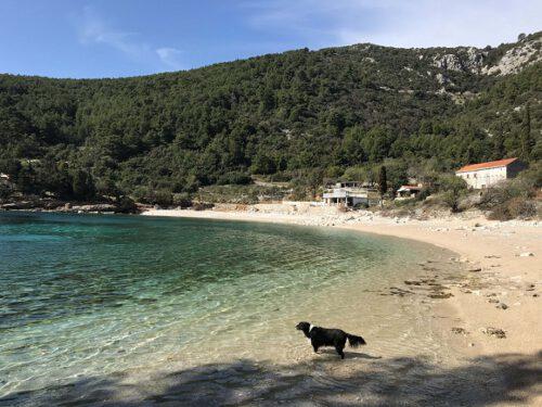 Pupnatska Luka Strand Kroatien