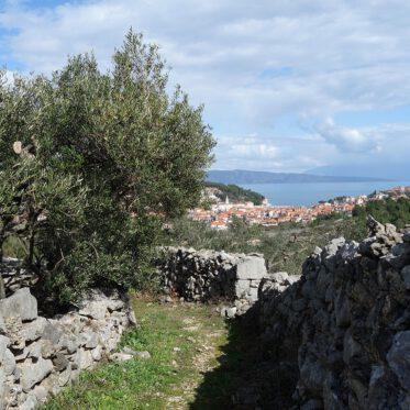 Hvar Kroatien Jelsa