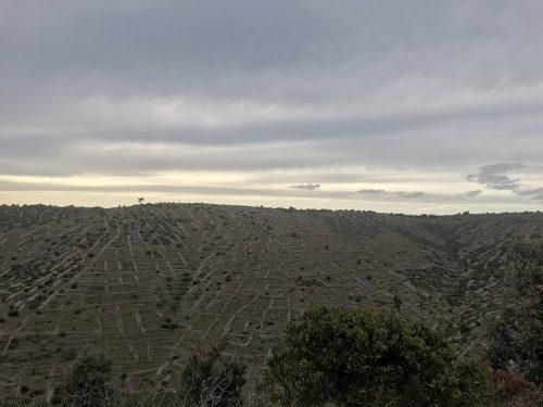 Hvar Steinmauern