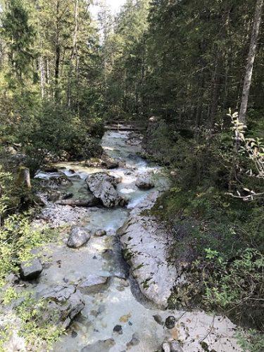Hintersee Zauberwald